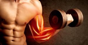 筋肉痛と加圧トレーニング①